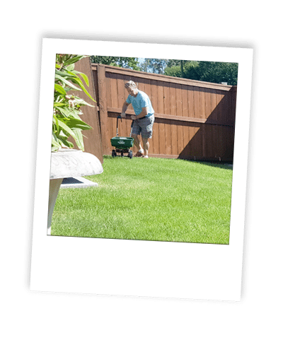 calgary fertilizer services applied to grass