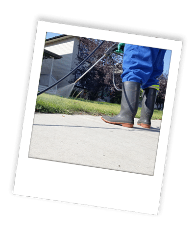 application of weed control and lawn fertilizer in calgary
