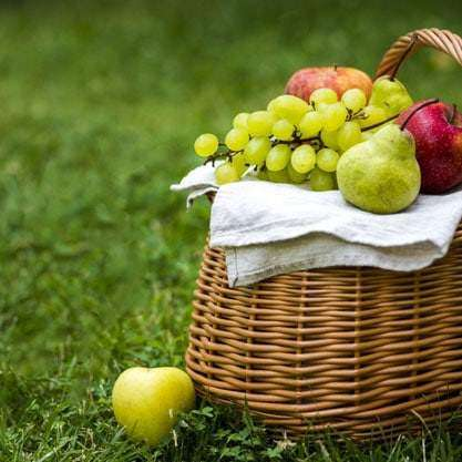 picnic basket on green weed-free lawn